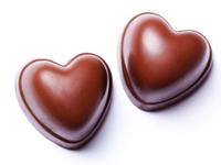 chocolat pour chat
