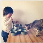 un chat qui fait la cuisine