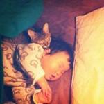 Enfant qui dort avec un chat