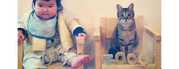 makicocomo et son chat inséparable