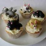 cupcake chat