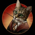 Chat Harry potter
