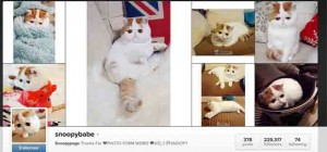 chat snoopybabe