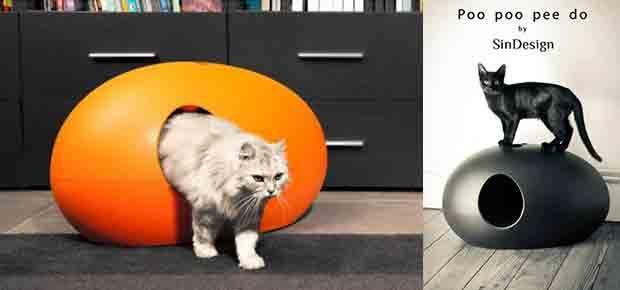 litiere chat rigolo