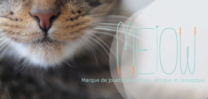 meiow jouet chat bio france interview