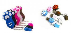 clef usb patte chat