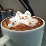 Mousse de café en forme de chat