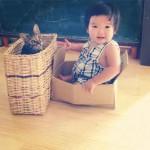 Chat dans panier avec enfant