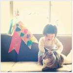 Chat joue sur le canape avec enfant