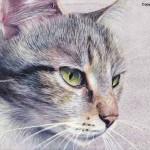 peinture chat blanc