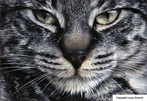 Peintures de chat par laure simonin artiste peintre for Peintures en noir et blanc
