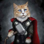 Héro Thor de marvel en chat