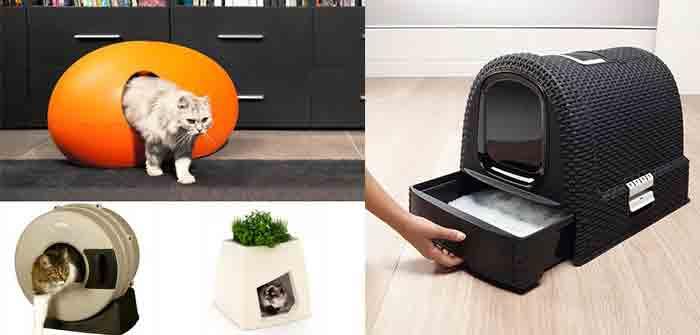 Idées cadeaux pour chat spécial maison toilette litière